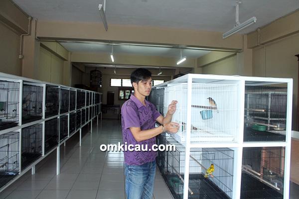 NSM Bird Shop Bogor