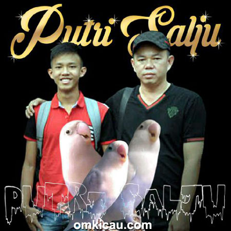 Om Arun dan Celvin
