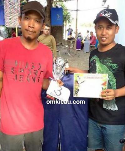 Om Miftahudin dan cucak hijau Piccolo