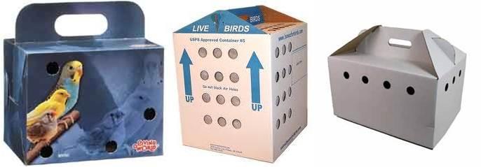 Kardus burung yang terdiri dari berbagai bentuk, ukuran dan modelnya