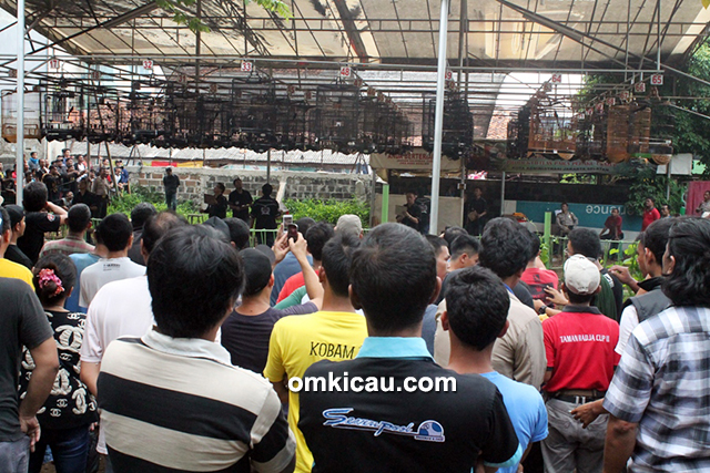 Lomba burung berkicau Road to Polo Homme Cup