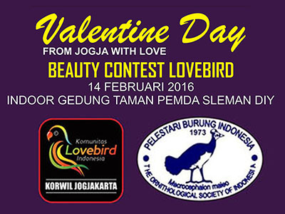 feat beauty contest lovebird valentine day
