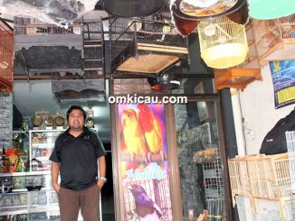 Om Yamani dan Hobiku Pet Shop
