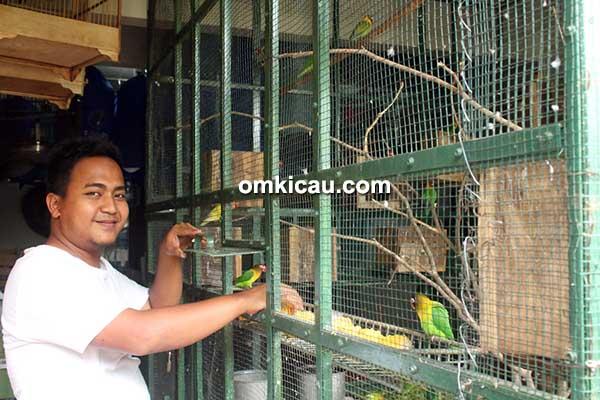 Aviary Jaya