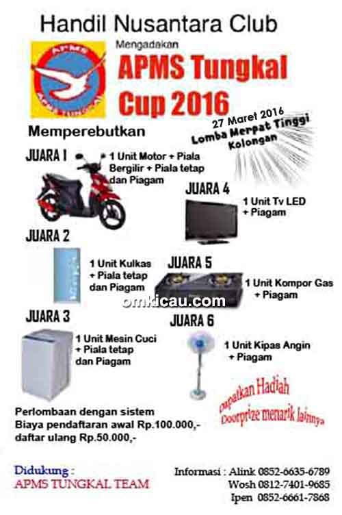 Brosur Lomba Burung Merpati Tinggi APMS Tungkal Cup 2016