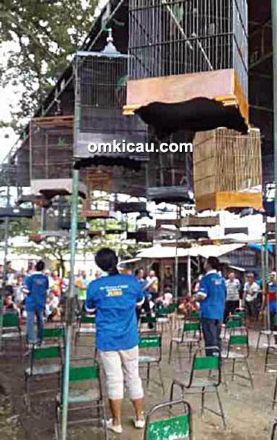 Latpres Tayu City feat Silobur