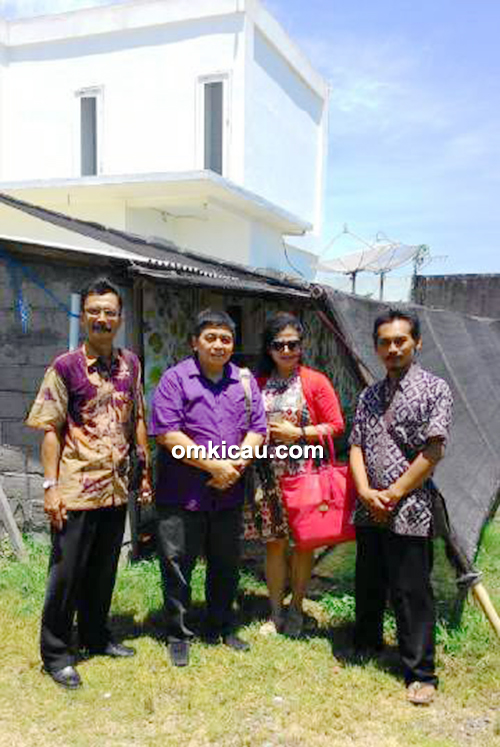 Breeding murai batu Kings Bali BF Denpasar
