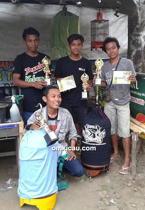 Latber Randu Alas BC - juara lovebird