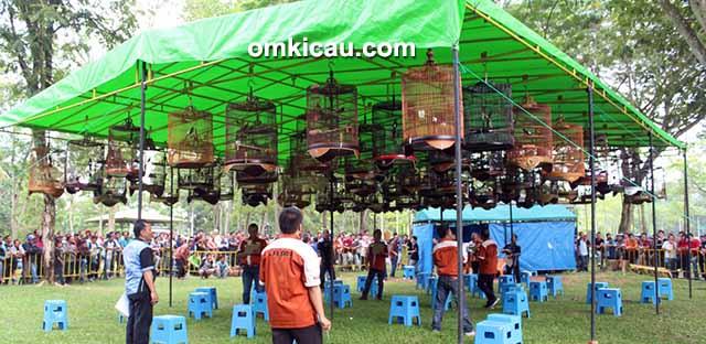 Suasana Festival Pekanbaru Berkicau