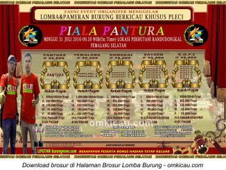 Brosur Lomba Burung Khusus Pleci Piala Pantura, Pemalang, 31 Juli 2016