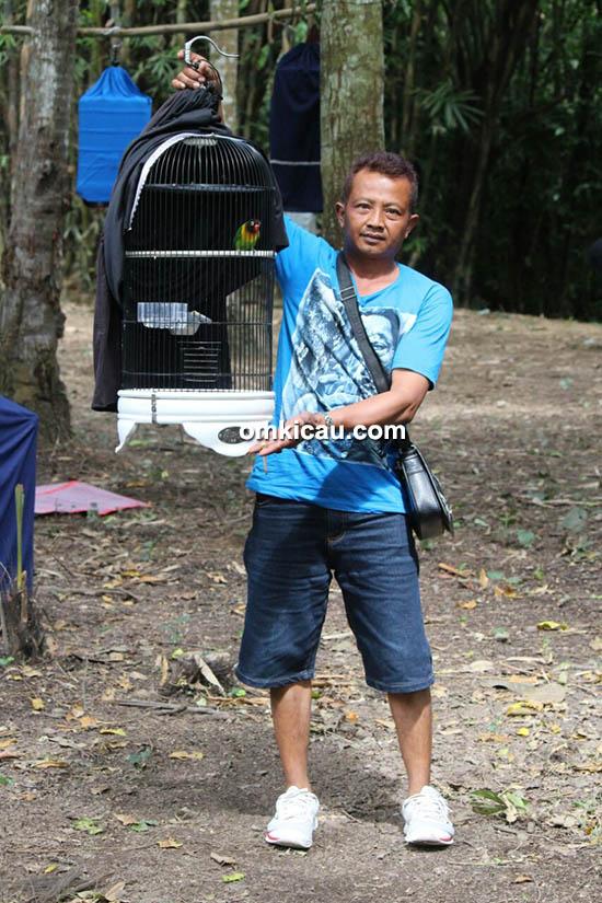 lovebird Angkasa