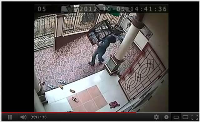 Aksi pencurian burung yang terekam kamera CCTV
