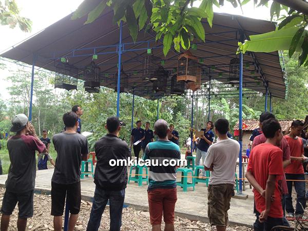 BBC Cirebon-kelas ciblek