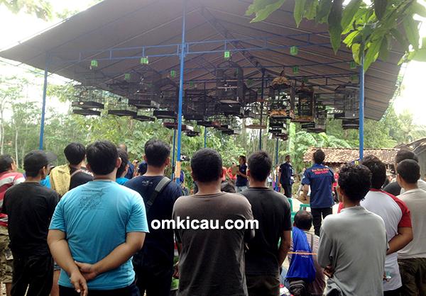 BBC Cirebon-kelas kacer