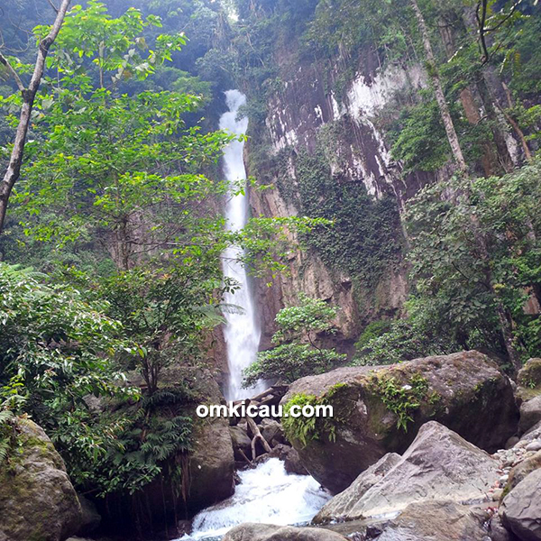 Taman Nasional Gunung Leuser