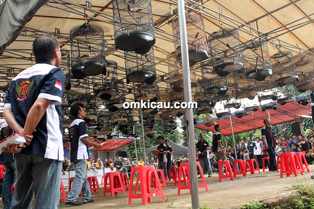 THR Cup Radjawali Indonesia