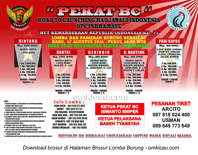 Brosur Lomba Burung Berkicau Pekat BC Road to Launching RI DPC Indramayu, 17 Agustus 2016
