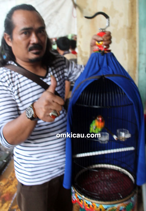 Om Kumis dan lovebird Rahayu