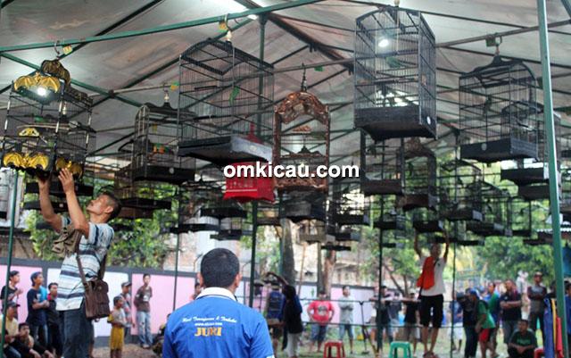 Lomba burung berkicau Menzikon Enterprise Jakarta