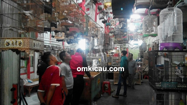 Arif Sangkar Bird Shop