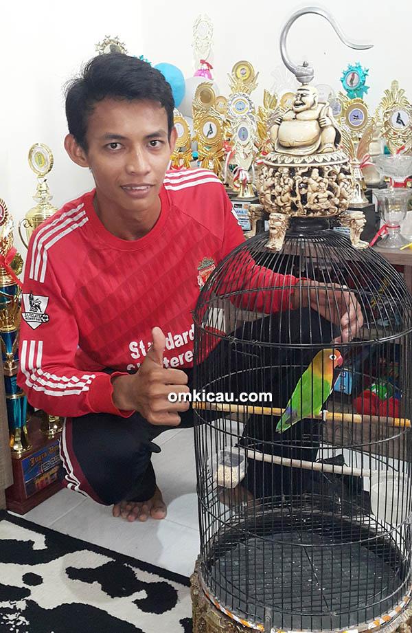 Om Bambang, perawat lovebird Pilot