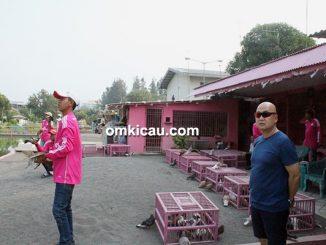 Kandang / Lapak Pink