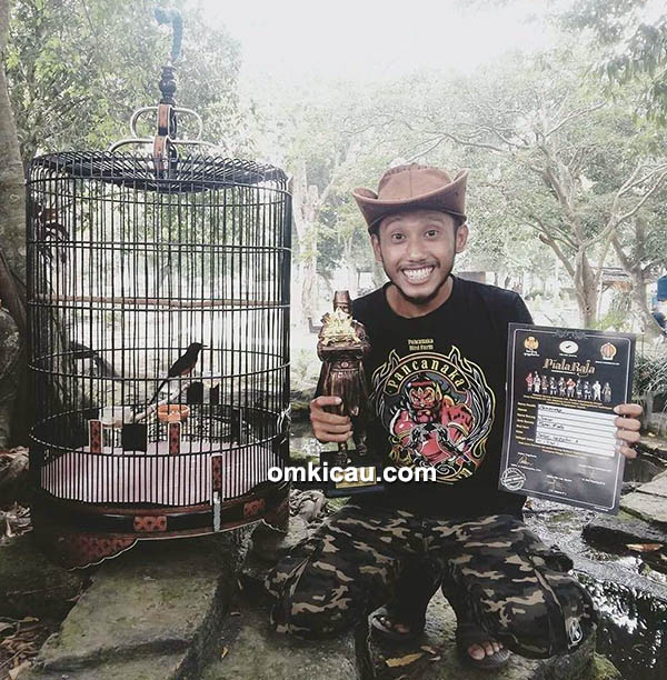 murai batu Junior milik Pancanaka Bird