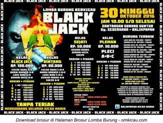 Brosur Lomba Burung Berkicau Black Jack, Balikpapan, 30 Oktober 2016