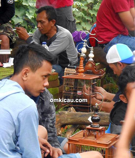 Kontes pleci PLPC Bandung