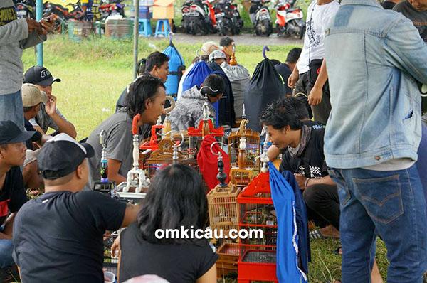 Festival Rawapening Ambarawa 2016