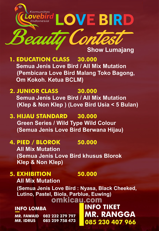 Lovebird Beauty Contest Show Lumajang