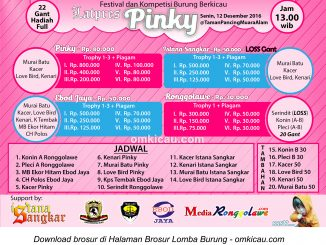 Brosur Latpres Burung Berkicau Pinky, Pekanbaru, 12 Desember 2016