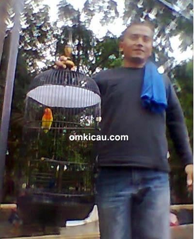 Om Puji Harto dan lovebird Ciprut
