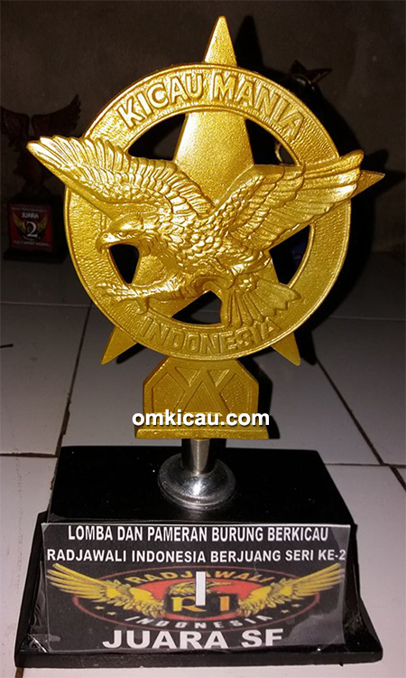 PCMI Chapter Palembang