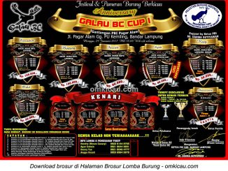 Brosur Revisi Lomba Burung Berkicau Galau BC Cup I, Bandarlampung, 29 Januari 2017