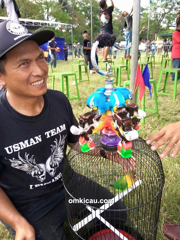 Lovebird Soldadu milik Om Cecep Sudrajat (Usman Team)