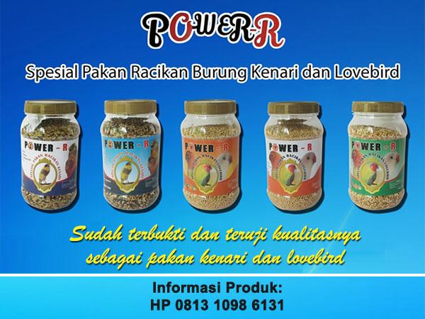 POWER-R
