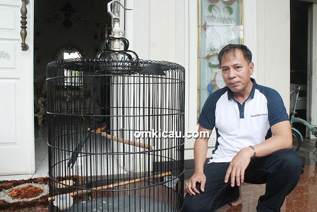 Breeding murai batu Shanti BF Jakarta