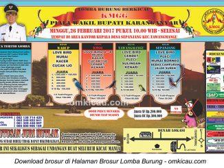 Brosur Revisi Lomba Burung Berkicau Piala Wakil Bupati Karanganyar, 26 Februari 2017