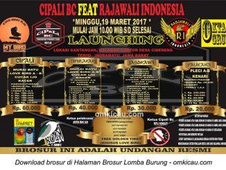Brosur Lomba Burung Berkicau Launching Cipali BC feat Radjawali Indonesia, Indramayu, 19 Maret 2017