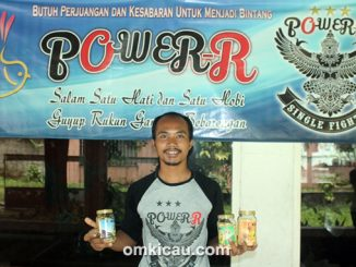 Pakan racikan Power-R