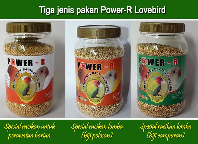 Tiga jenis pakan Power-R Lovebird