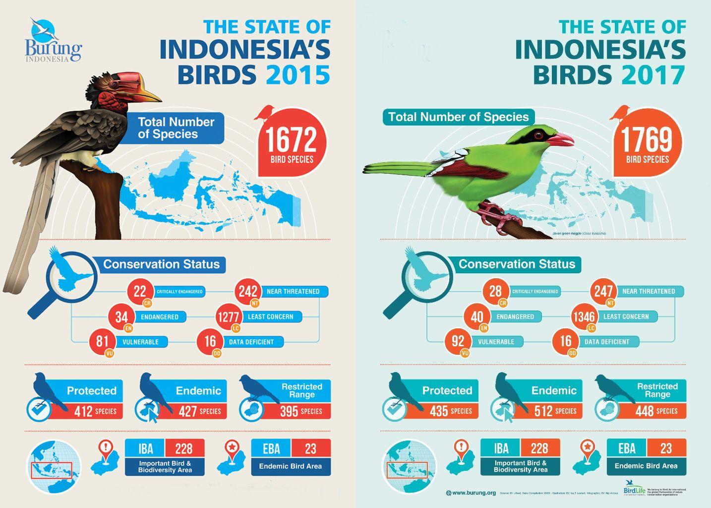 Infografis status keterancaman burung di Indonesia