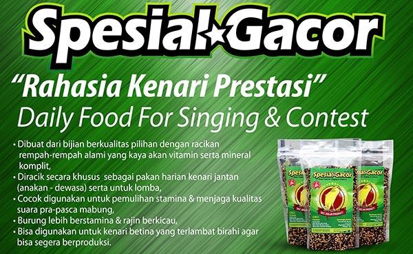 Spesial Gacor - Spesial Budidaya - Pakan kenari SKC JOGJA Product