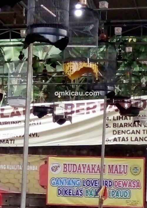 Latpres Ciganjur Enterprise Jakarta