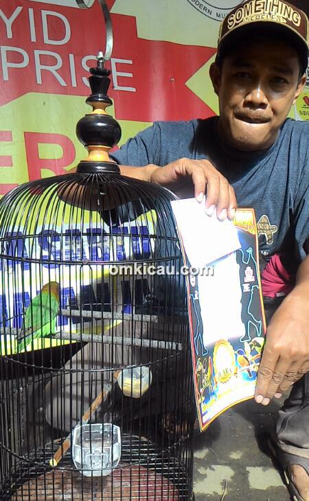 Lovebird Donita milik Om Iskandar