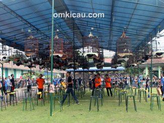 lomba burung berkicau Piala Pasundan