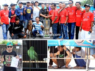 Transmart Cup 1 Jogja