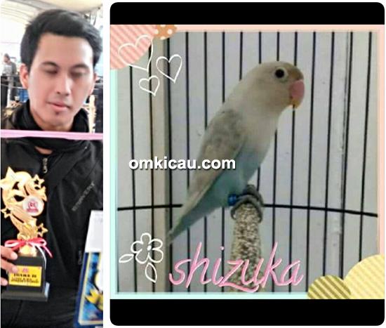 Lovebird Shizuka