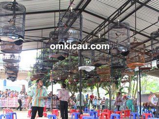 Lomba burung berkicau Road to Piala Ronggolawe di Jambi